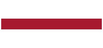 meritmind logga