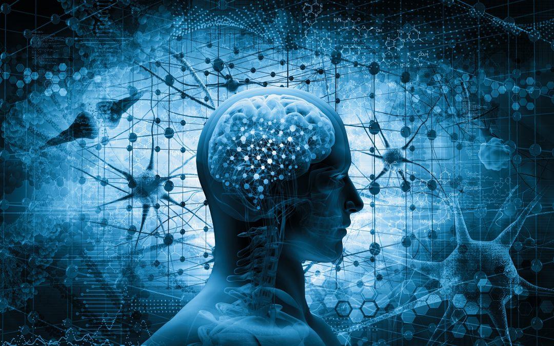 Lär dig arbeta med SCARF modellen och förstå hjärnan